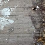 Holzbilder im Einklang mit der Natur