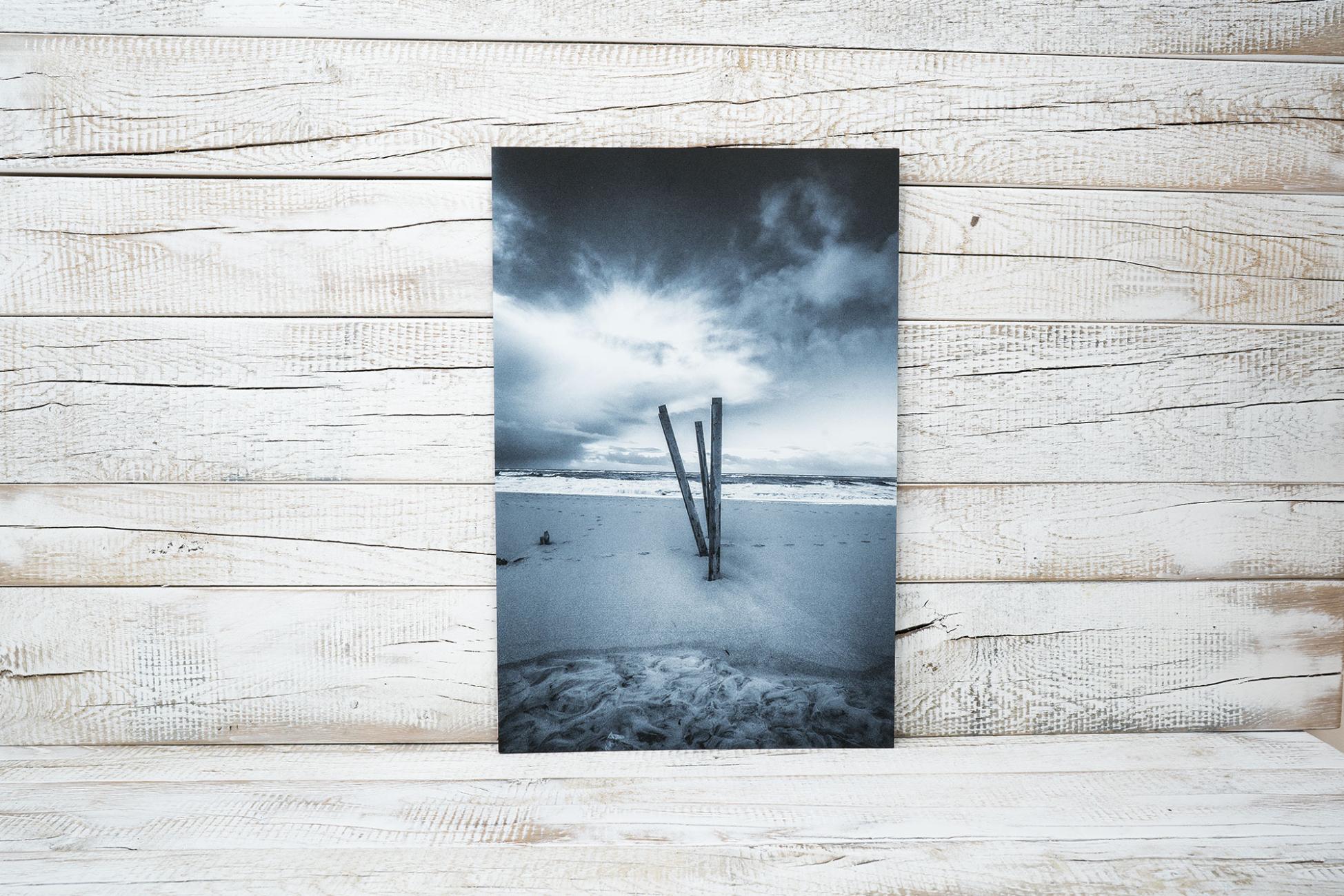 druck von fotos und bilder auf forex hartschaumplatte direktdruck hamburg. Black Bedroom Furniture Sets. Home Design Ideas